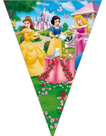 Флажки с принцессами